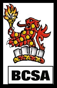 IDEA StatiCa UK - BCSA Member